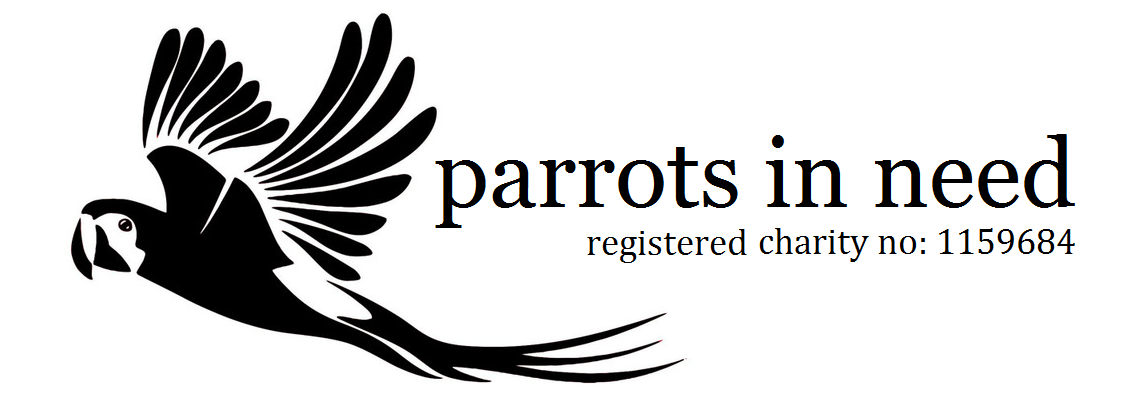 parrots in need, parrot rescue & rehoming